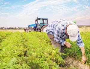 20 milyon lira çiftçinin cebinde kaldı