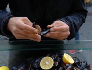 'Dip balığı ve midye yemeyin'
