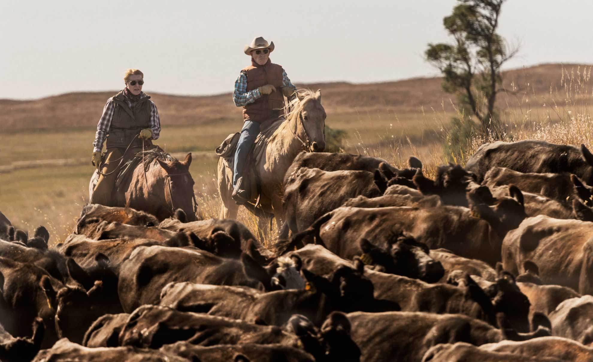 nebraska-dude-ranch