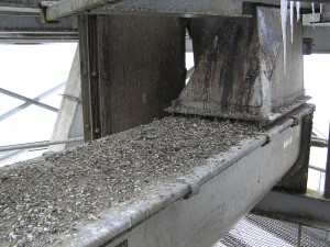 Guano Cleaning