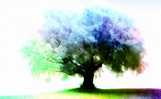 https://i1.wp.com/www.1stwebdesigner.com/wp-content/uploads/2009/03/season-tree-wallpaper-11.jpg