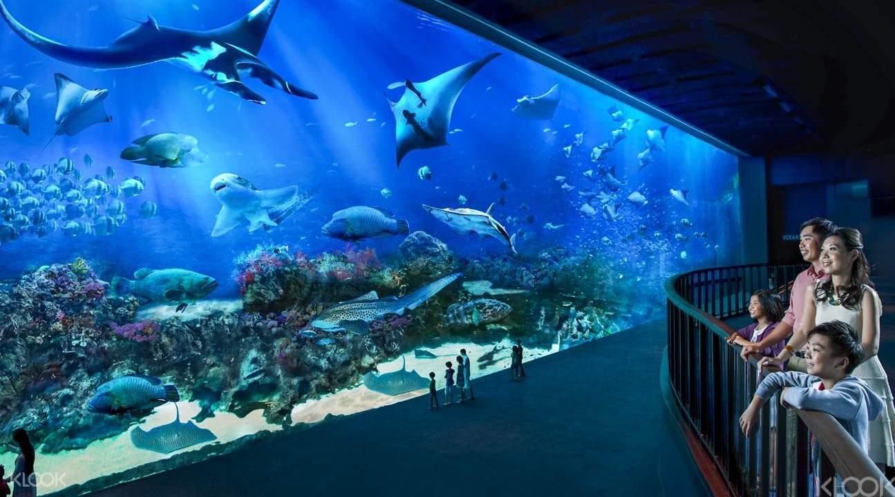 SEA-Aquarium-Ticket-Sentosa-Singapore
