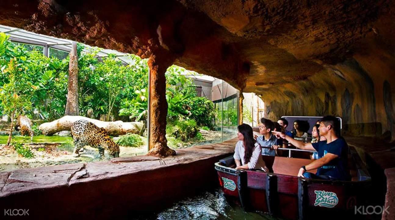 Singapore-River-Safari