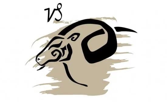 zodiaque-capricorne