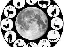 Légende : Désignation de l'ordre des animaux selon leur période favorable