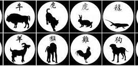 Légende : rang zodiacal, arbitrage du porc et conflits entre les animaux