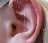 Rêver des oreilles