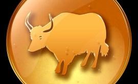 Boeuf: Horoscope Chinois 2020