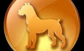 Chien: Horoscope Chinois 2015