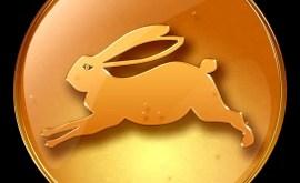Lapin: Horoscope Chinois 2020