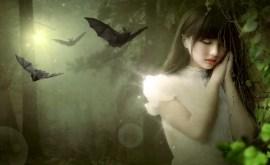 Rêver de chauve-souris