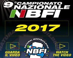 NBFI_2017_G