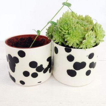 dalmatian-urtepotteskjulere-to
