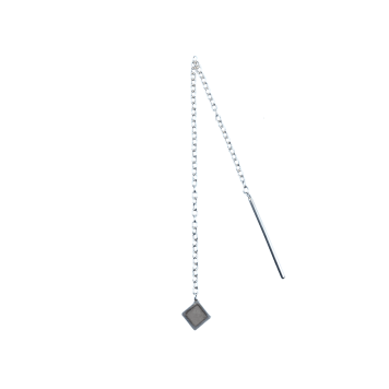 Tiny tetra grey1
