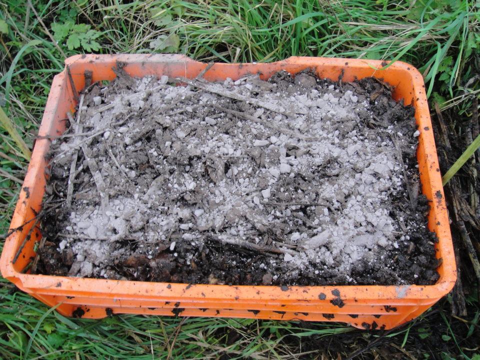 Kompost mit Urgesteinmehl