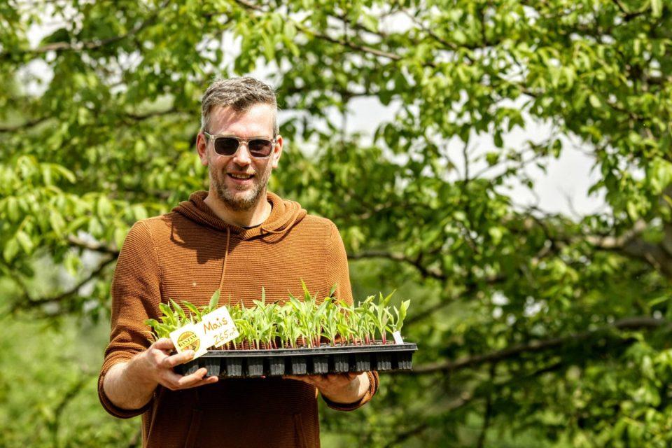 Volker Gehrmann leitet die Aktion Bantam Mais, Foto: Jan Ganschow