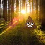 Kac*** im Wald