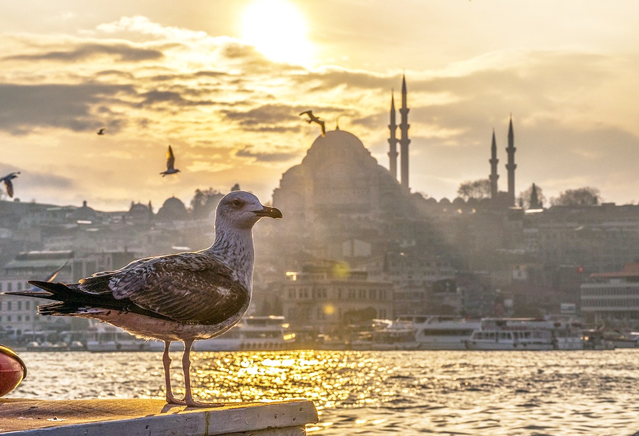 14 smells of Istanbul that always bring you back there
