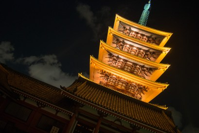 The pagoda at night.
