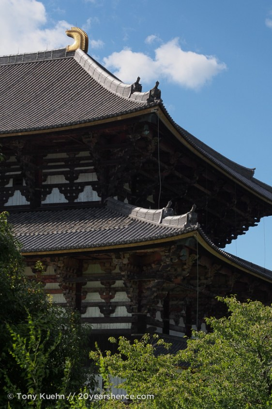 Todai-ji, from surprisingly far away
