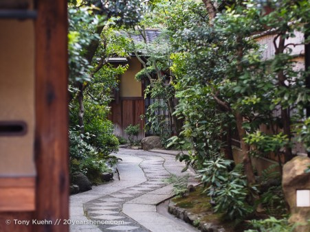 Inside the walls of the tea house