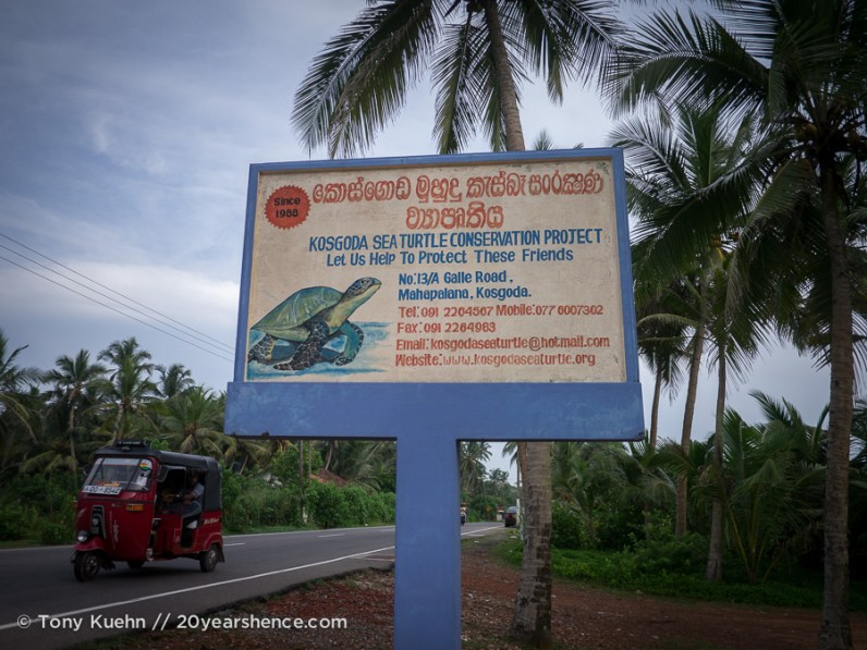 Galle Turtle Sanctuary