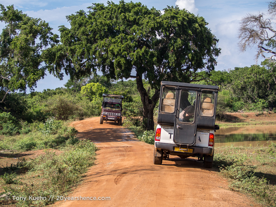 Jeeps in Yala National Park