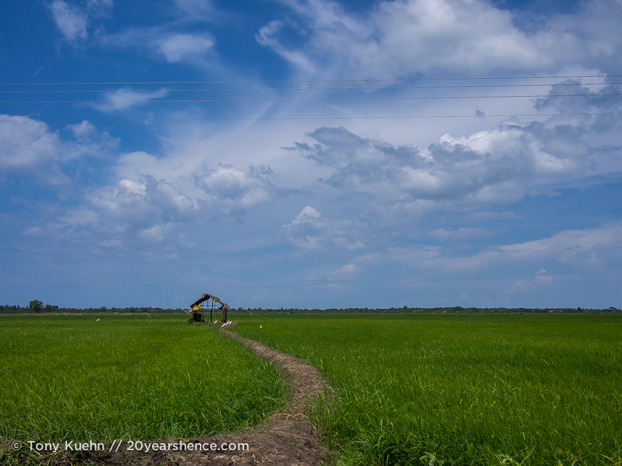 A little shack at the end of a path in a beautiful rice paddy near Baticaloa, Sri Lanka