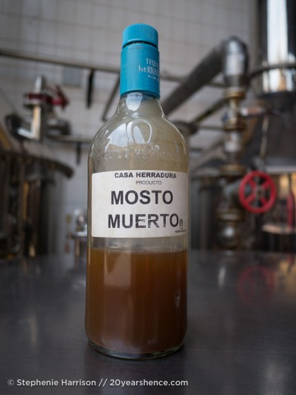 Mosto Muerto, single distilled tequila spirits
