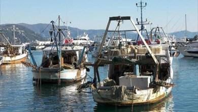 مراكب الصيد في الساحل الليبي
