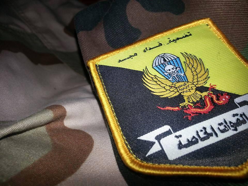 القوات الخاصة الصاعقة