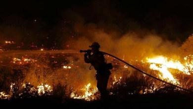 حريق غابات لوس أنجليس
