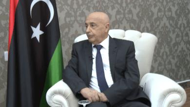 رئيس مجلس النواب المستشار عقيلة صالح - ارشيفية