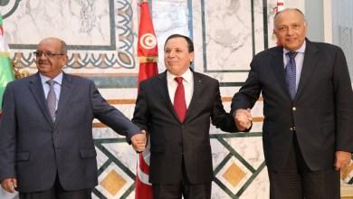 وزراء خارجية دول الجوار الليبي