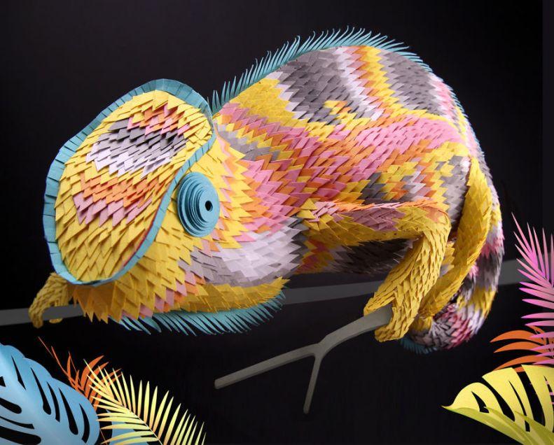 Lisa-Lloyd-Chameleon-5af198341440d__880