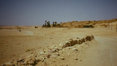 مذبحة تقترفها داعش في بلدة الفقهاء بمنطقة الجفرة - صورة أرشيفية