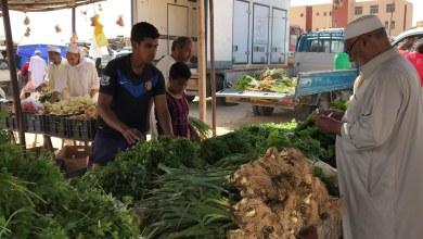سوق الخضراوات الشعبي - تيجي