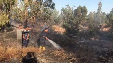 السيطرة على حريق في المنتزه الوطني في مدينة صرمان