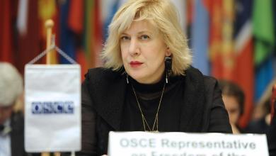 مفوضة المجلس الأوروبي لحقوق الإنسان دنيا مياتوفيتش
