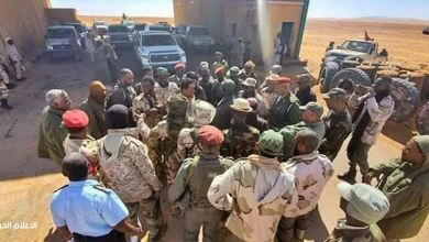 دوريات قتالية مكثفة في الجنوب الغربي لتأمين المناطق الحدودية