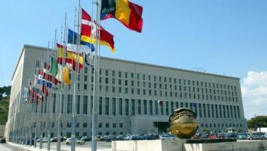 وزارة الخارجية الإيطالية تصدر بياناً يرحب بمبادرة فزان وإنشاء مجلس للإقليم