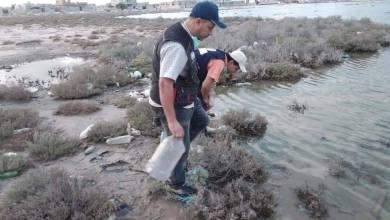 الإصحاح البيئي يقوم بجولة في زاورة لمكافحة البعوض