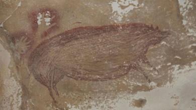 اكتشاف أقدم لوحة صخرية في العالم