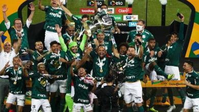 بالميراس ينتزع كأس البرازيل المؤجلة بعد فوزه على غريميو
