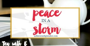 Peace In A Storm