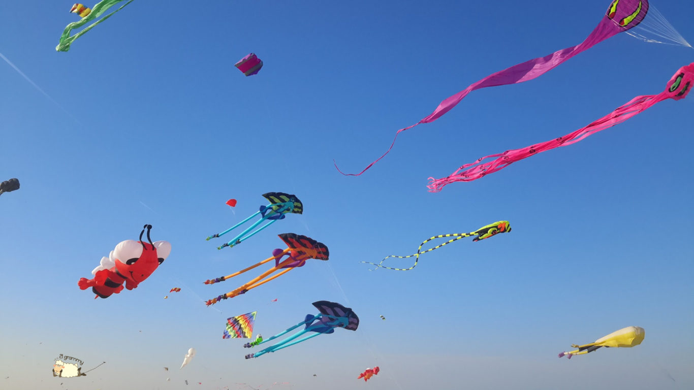 The Colors Of The Wind Kites In Cervia
