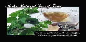 RRL-Tea-Title-Pic