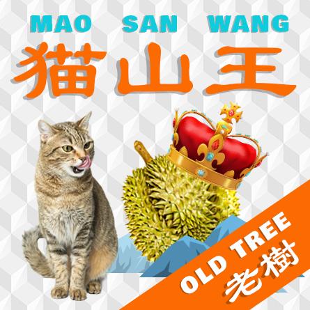 Mao San Wang Old Tree