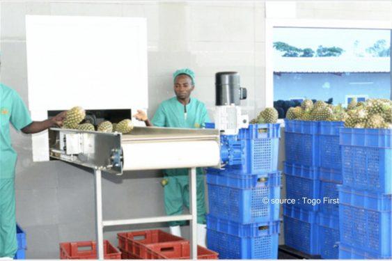 *Togo First* : Au Togo, l'OCDE va examiner les politiques de transformation économique