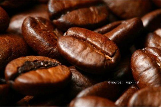 *Togo First* : L'ACRAM va créer un centre de formation sur le café Robusta